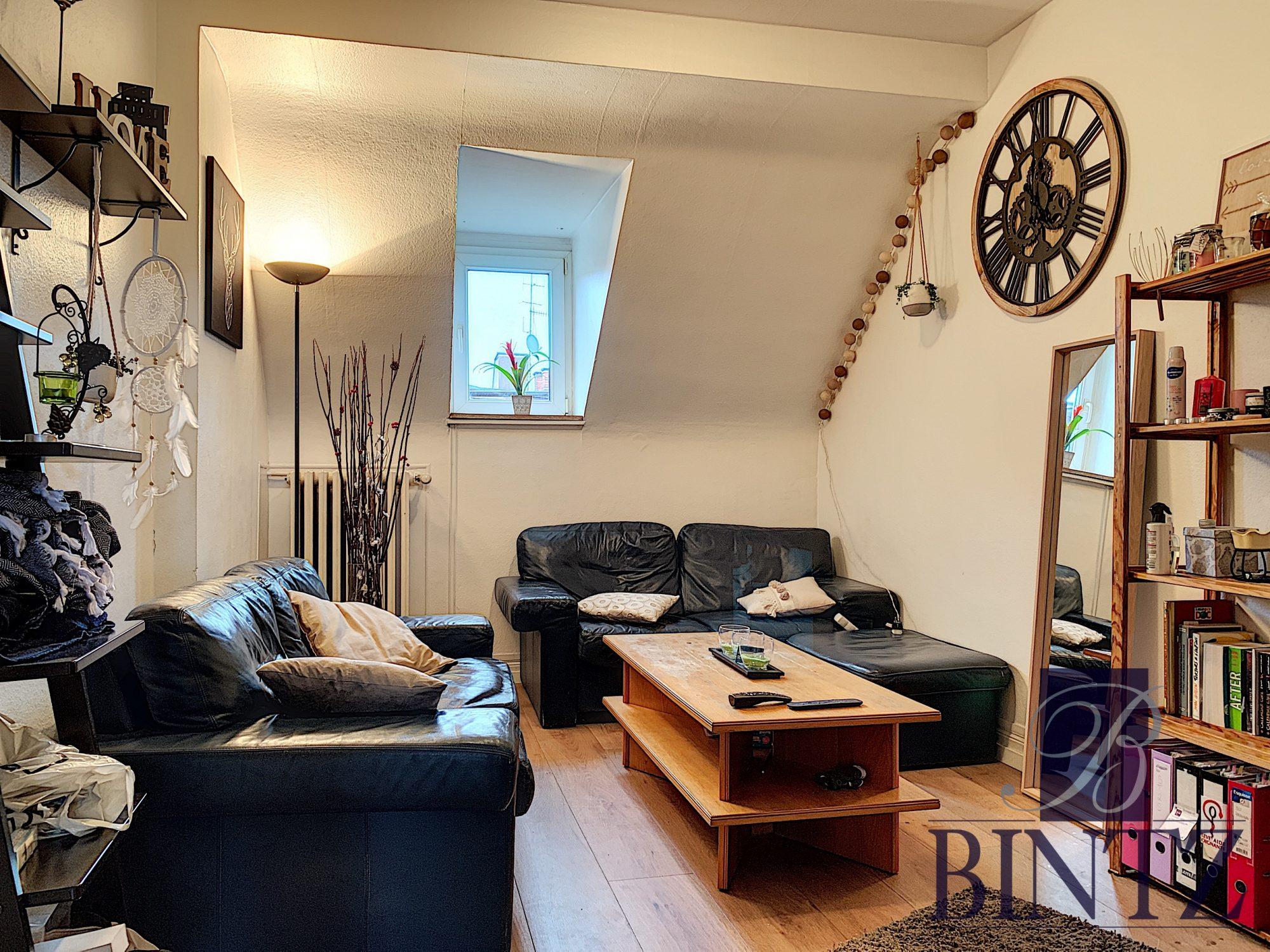 Ensemble de 2 appartements NEUSTADT - Devenez locataire en toute sérénité - Bintz Immobilier - 5