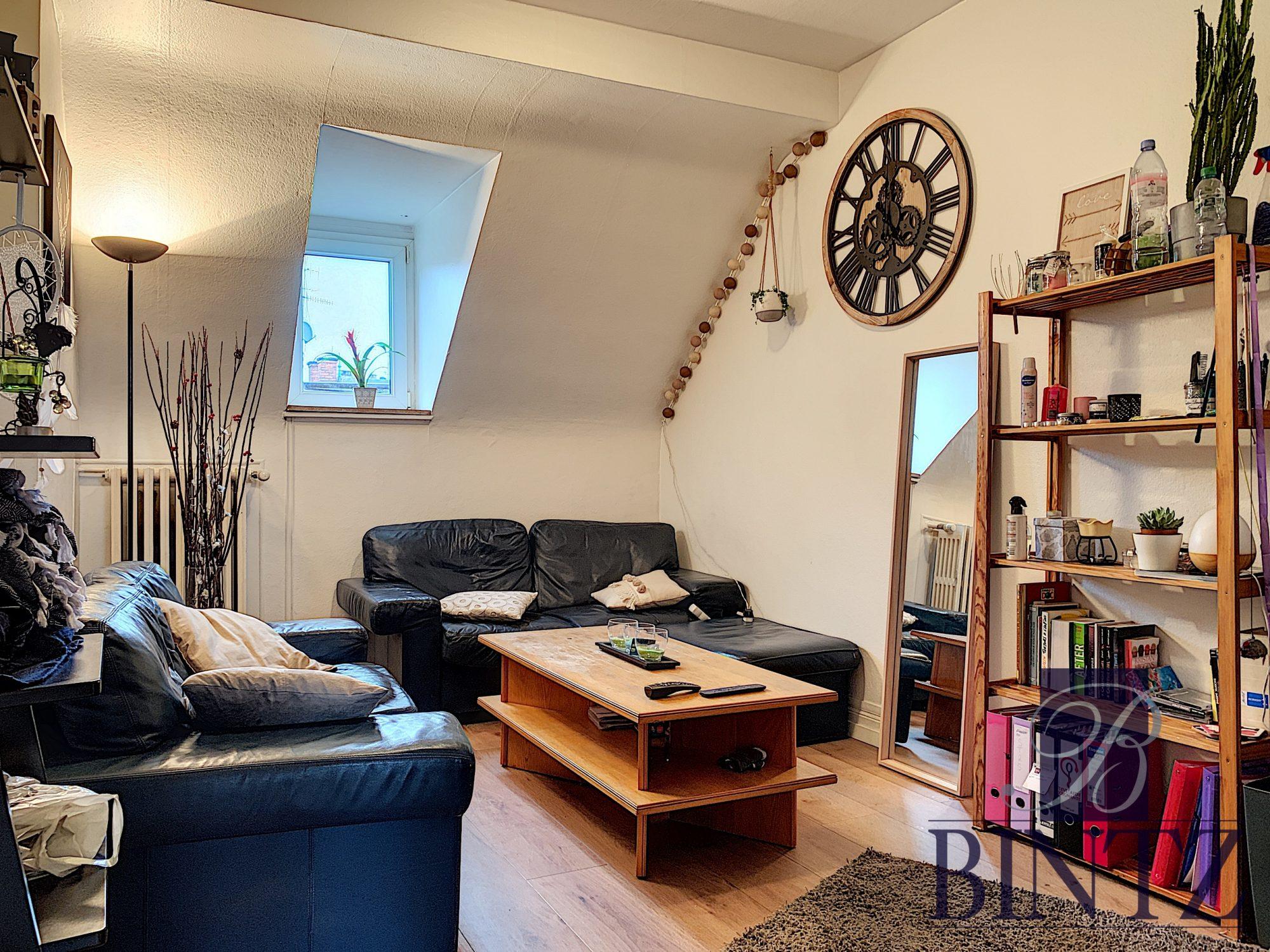 Ensemble de 2 appartements NEUSTADT - Devenez locataire en toute sérénité - Bintz Immobilier - 7