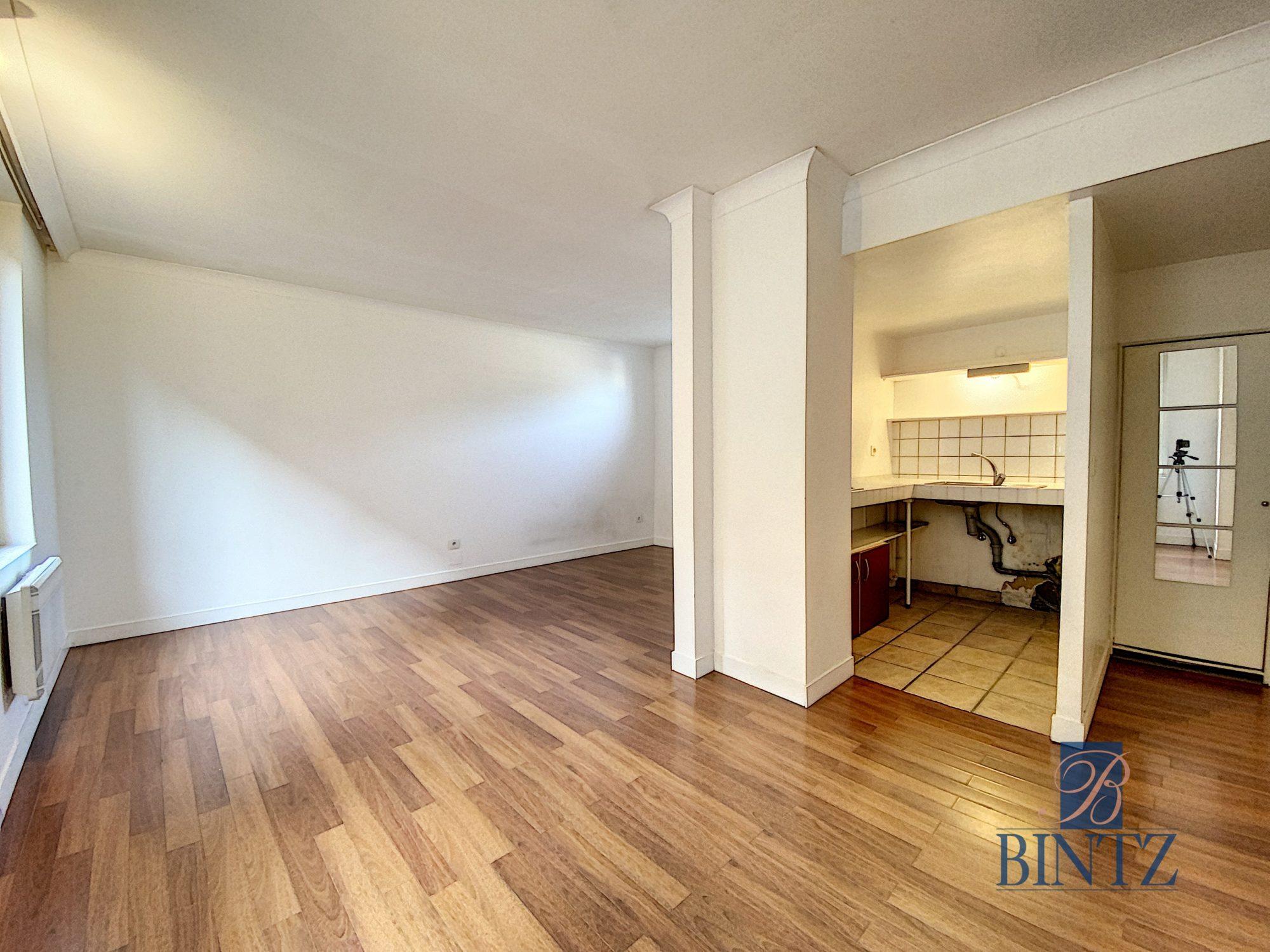 GRAND T1 SCHILTIGHEIM POUR INVESTISSEUR - Devenez propriétaire en toute confiance - Bintz Immobilier - 2