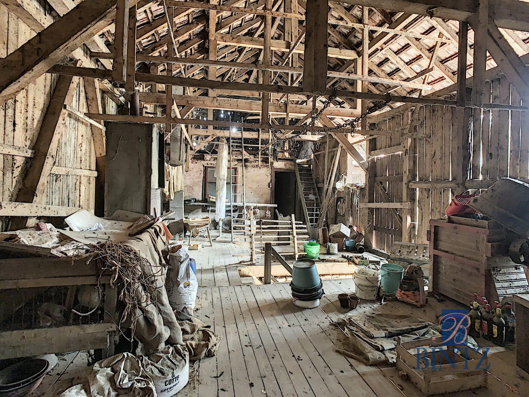 Corps de ferme à Gingsheim - Devenez propriétaire en toute confiance - Bintz Immobilier - 12