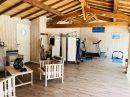 225 m²  9 pièces Maison