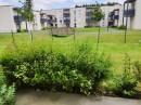 Appartement 35 m² Douai  2 pièces
