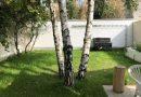 Maison  Montlignon  220 m² 11 pièces