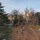 Pau Université 5 pièces Appartement  83 m²