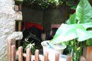 33 m²  Maison 2 pièces Saint-Mammès