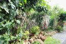 Maison Nouméa Magenta 110 m²  4 pièces