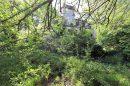 Maison 340 m² BLAGNAC,Blagnac BLAGNAC 10 pièces