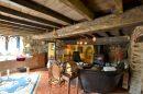 500 m² 20 pièces Montferrer   Maison