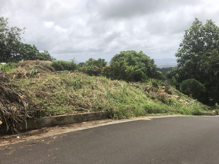 Vente Terrain LE ROBERT 97231 Martinique FRANCE