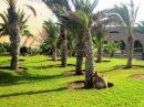 1000 m² 15 pièces Agadir Agadir  Maison