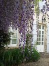 Coteaux-du-Blanzacais  Maison 376 m² 10 pièces