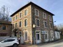 Maison  Saint-Vincent-de-Reins  229 m² 6 pièces