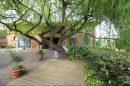 Maison  8 pièces SAINT-SAUVEUR  340 m²
