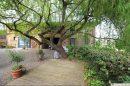 Maison 340 m²  SAINT-SAUVEUR  8 pièces