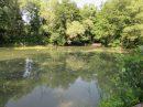 Bel étang avec chalet