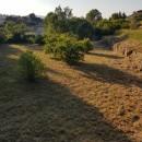 Terrain 1281 m² Carcès campagne  pièces
