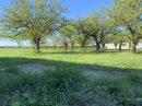 Terrain 904 m² Roquefort   pièces
