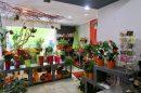Immobilier Pro 75 m² Bizanos PAU SUD 2 pièces