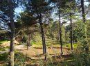 Terrain Valle-di-Mezzana  0 m²  pièces