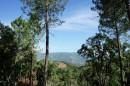 valle di mezzana   viabilisé  afa vente  terrain  sarrola