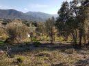 Terrain 0 m² Eccica-Suarella Proche d'Ajaccio  pièces