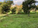 Terrain Valle-di-Mezzana au dessus de l'école 0 m²  pièces