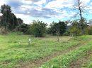 Terrain 0 m²  pièces Valle-di-Mezzana
