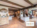 Maison Villy-le-Pelloux  262 m² 9 pièces