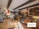 Villy-le-Pelloux  Maison  262 m² 9 pièces