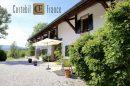 Maison 350 m² Copponex  10 pièces