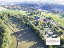 La Balme-de-Sillingy  0 pièces Immobilier Pro  25831 m²