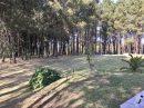 Pavillon de plain-pied de 110 m² avec piscine et terrain boisé