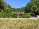 Maison individuelle avec terrain clos et arboré