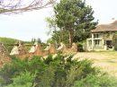 Maison 336 m²  10 pièces