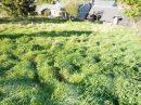 7 pièces  Rochefort-Montagne  132 m² Maison