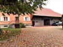 150 m² 7 pièces Maison Seppois-le-Haut