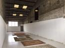 Immobilier Pro  Vallet  251 m² 0 pièces