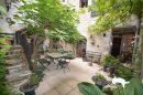 Maison Pesmes  302 m² 9 pièces