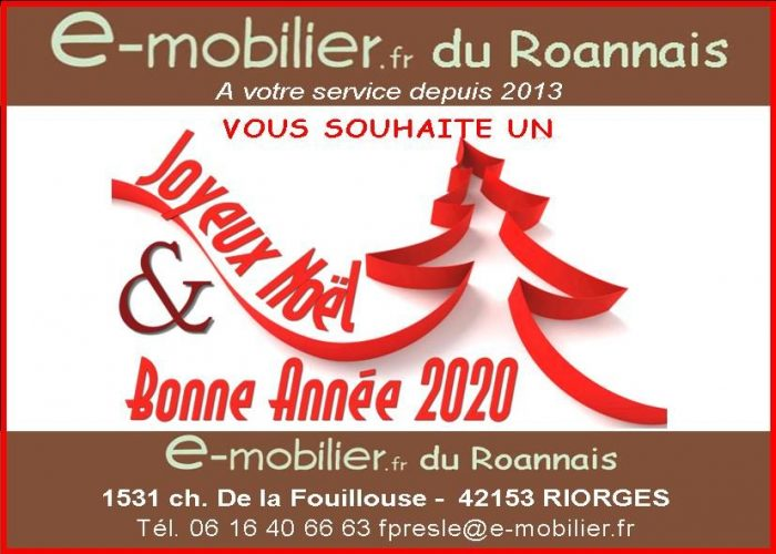 Vente Bureau/Local ROANNE 42300 Loire FRANCE