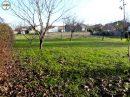 Terrain 0 m² Saint-Fort-sur-Gironde   pièces