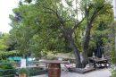 Maison 7 pièces 330 m² Clermont-l'Hérault A proximité du coeur de ville