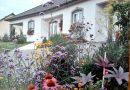 Maison 180 m² 6 pièces Sarrebourg