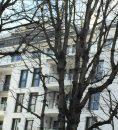 Appartement Paris  79 m² 3 pièces