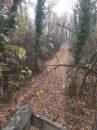 Property <b></b> Yonne