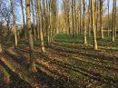 Property <b>16 ha 62 a </b> Mayenne