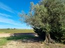 Property <b class='safer_land_value'>35 ha </b> Pyrénées-Orientales