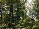 Property <b>07 ha 20 a </b> Yonne