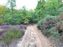 Property <b class='safer_land_value'>65 ha 28 a 50 ca</b> Tarn-et-Garonne