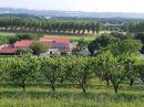 Property <b>32 ha 37 a </b> Lot-et-Garonne