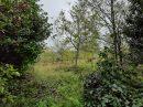 Property <b>05 ha 44 a </b> Aveyron